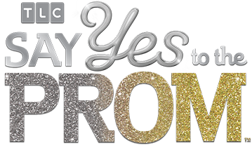image of the say yes to the prom logo